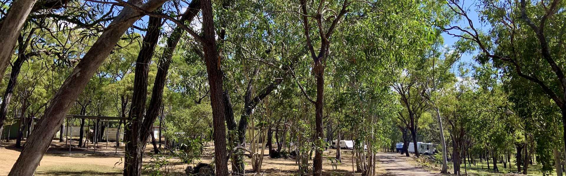 Kui Parks, Mt. Carbine Caravan Park QLD