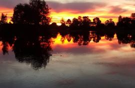 Kui Parks, Chiltern, Lakes Andersons Caravan Park