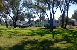 Kui Parks, Trangie Caravan Park, Sites