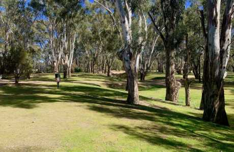 Kui Parks, Bushland on the Murray Holiday Park, Sites